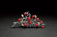 红珊瑚极品—阿卡